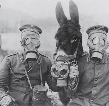 obtenir de nouveaux Conception innovante sensation de confort Evolution technologique des masques à gaz - Fédération des ...